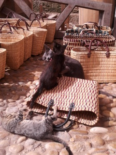 Essaouira.... 13074020120819115845