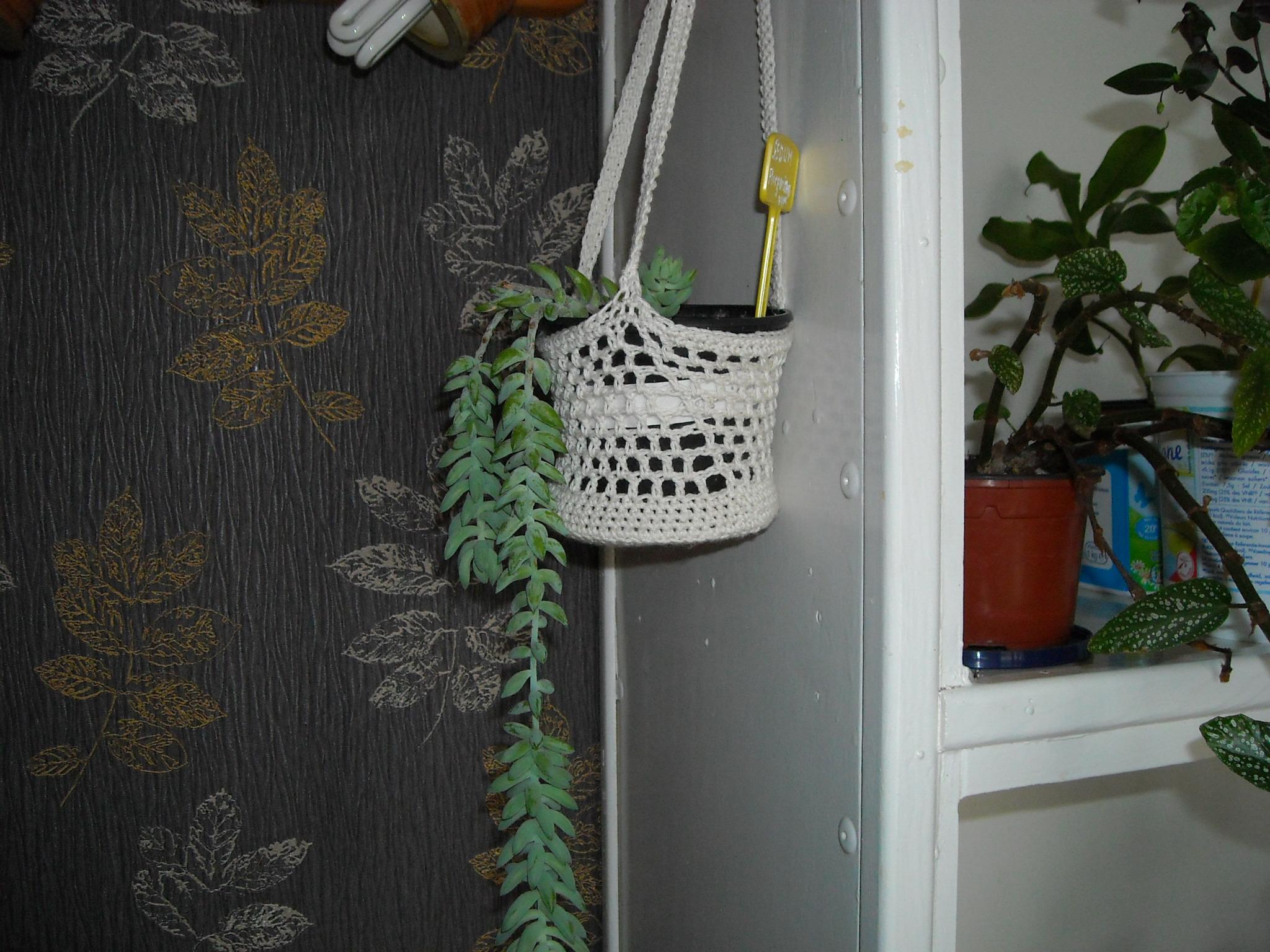 un aperçue de mon HLM 134092ensembledemesplantes007