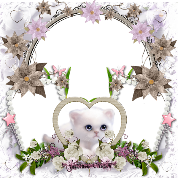 cluters 23 144394clusterpetitchatblanc