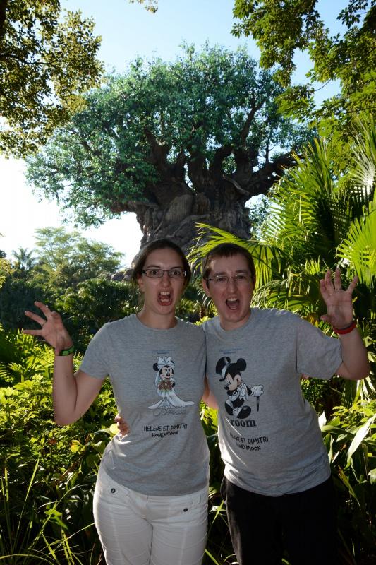 [18-31 octobre 2014] Voyage de noces à Walt Disney World et à Universal - Page 12 151087AKTREEBACK7078777226