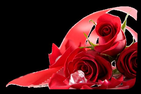 Tubes roses 15224057ddeb35