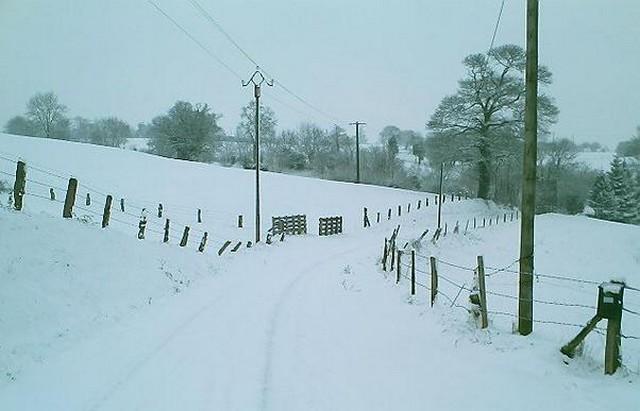 Mercredi 06 janvier 2010 - (Neige à Pont Farcy - 7 à 10 cm) 152543campeauxneige3