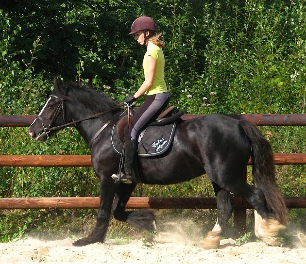 Black Opal et Rosie 155588IMG0616