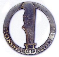 Sergent René CHEVALIER Commando Nord Vietnam N°15 MPLF 30/6/1953 155843commandon152qo1