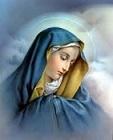 Poster vos Images Religieuses préférées!!! 1592060012