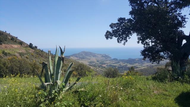 Ultimate Off Road 2016 : de Millau a Collioure, 1000 bornes de pistes en maxi trail 159368selectionUOR20168