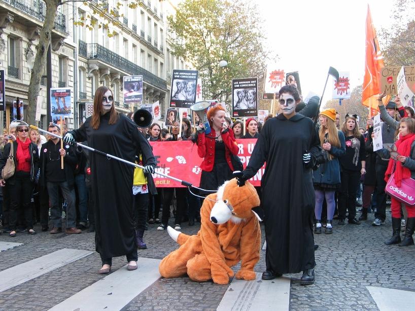 07 - Marche contre la fourrure - Paris 19 novembre 2011. 159632IMG6524