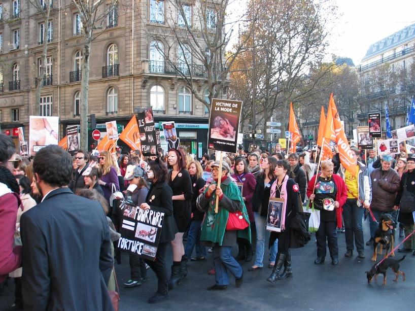 07 - Marche contre la fourrure - Paris 19 novembre 2011. 159923IMG6541