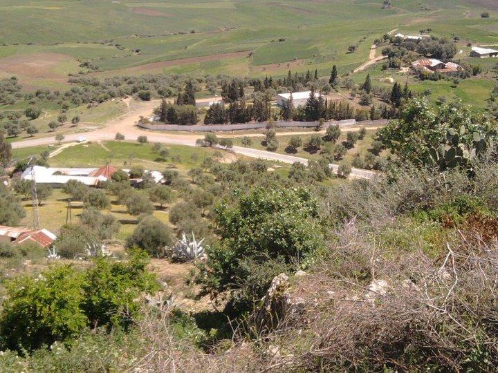صور جديدة لمنطقة سيدي رضوان  161273301888147409088720026100003528081474183356869423173n
