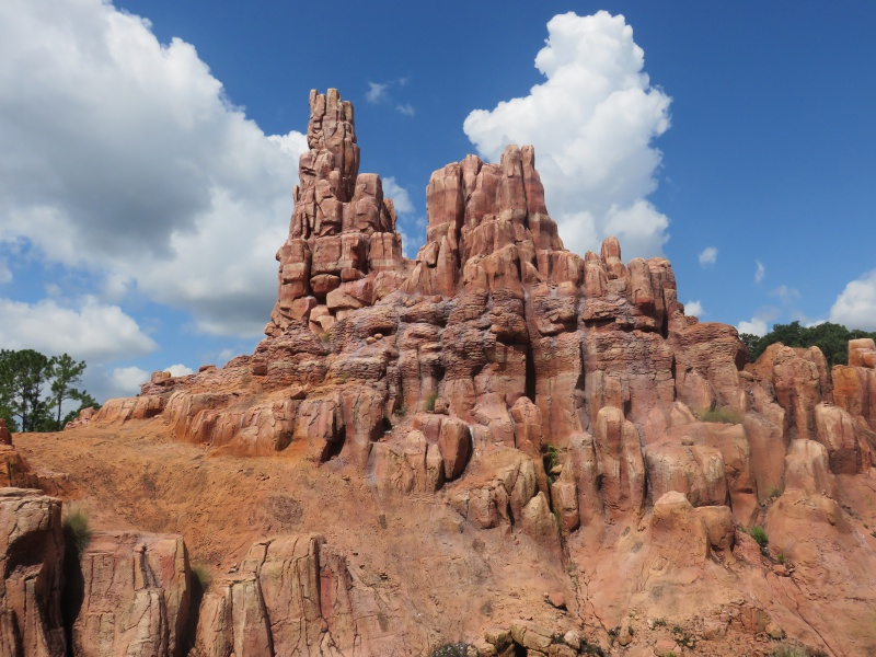 Walt Disney World + Universal Studios + Sea World + Busch Gardens Summer 2014 - Page 4 161887IMG0885