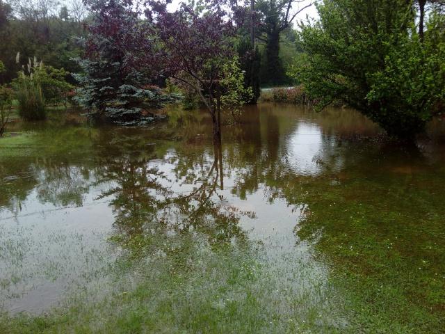inondation :mes veilles sauvées de justesse ! 166019014