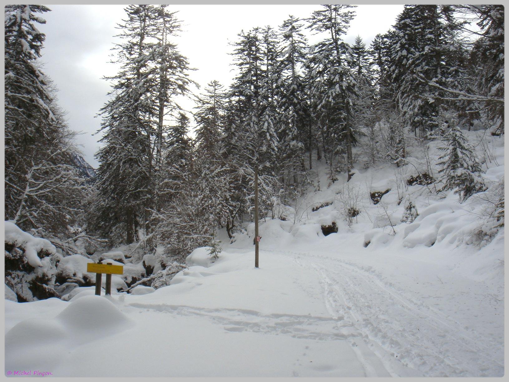 Une semaine à la Neige dans les Htes Pyrénées - Page 2 166352DSC011874