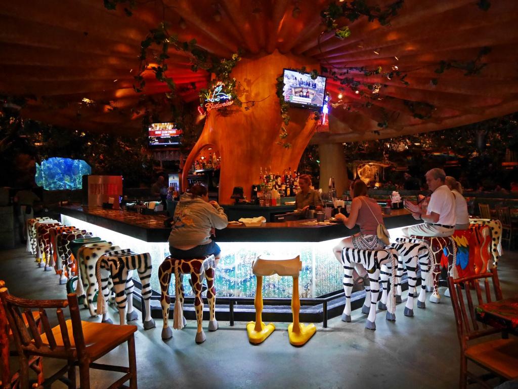 Une lune de miel à Orlando, septembre/octobre 2015 [WDW - Universal Resort - Seaworld Resort] - Page 6 166369P1030026