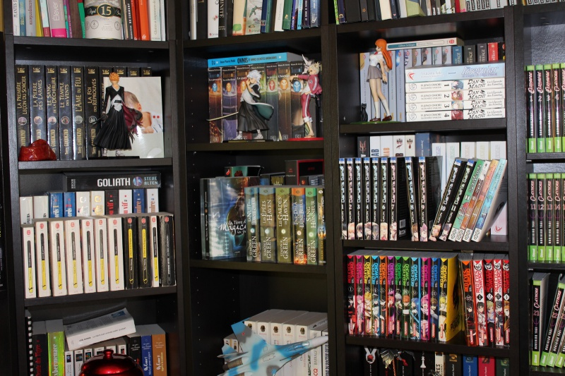 Photos de vos collections d'otaku - Page 10 173805IMG7604copier