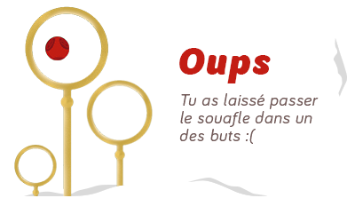 Serdaigle vs. Poufsouffle [LE MATCH] - Page 4 175271quidditchgardienoups