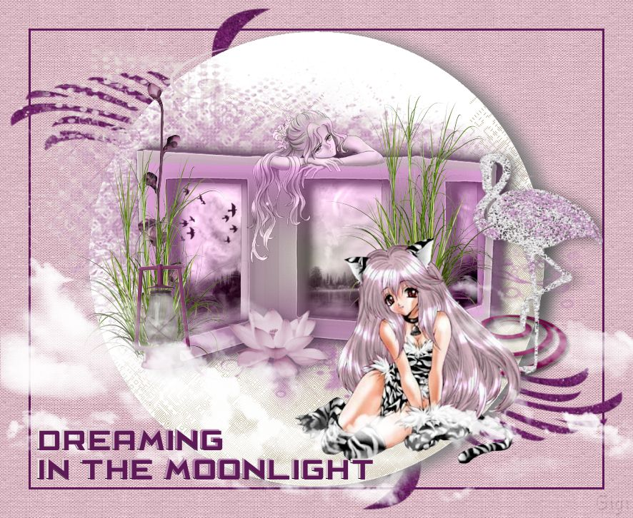 DREAMING IN THE MOON 1760031128
