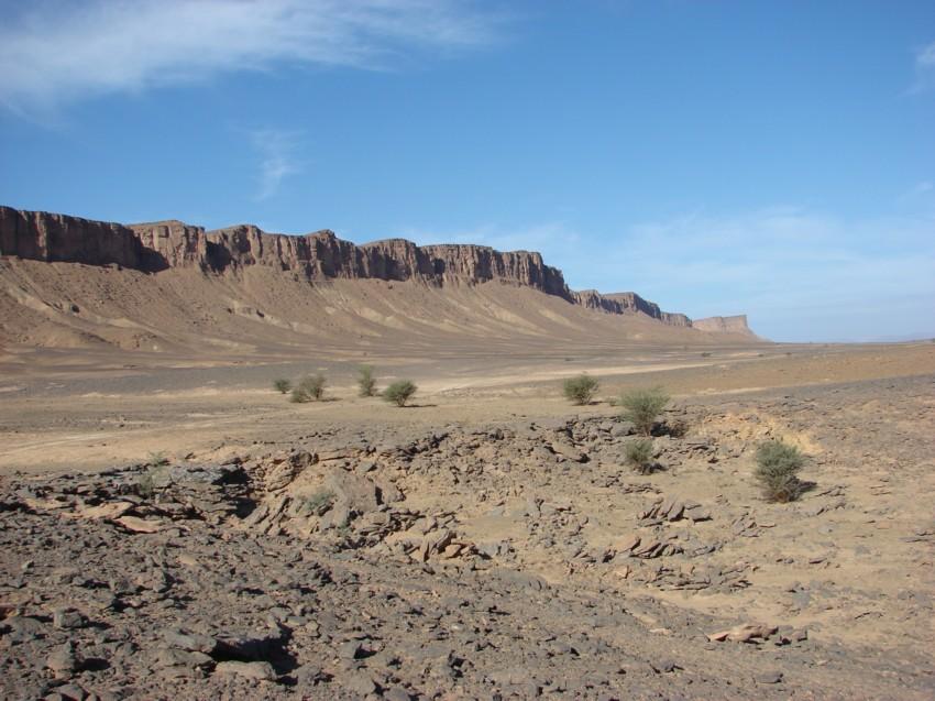 retour maroc 2012 - Page 2 177530144
