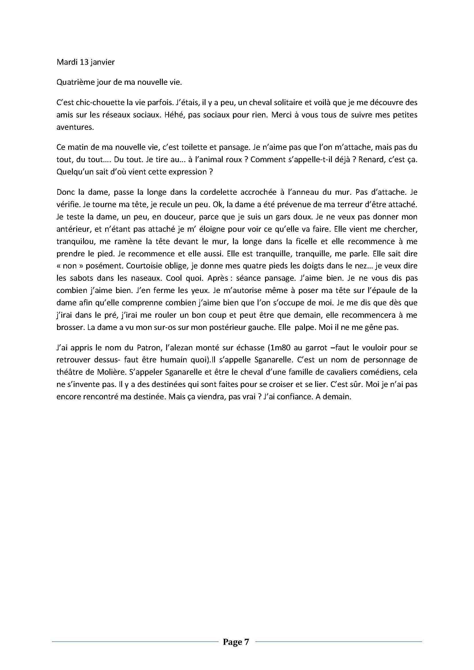 (dpt 76) ESTIMAUVILLE Pur sang Anglais, né en 2001, hongre, en FA chez Michèle76 - Page 5 179089janvierPage07
