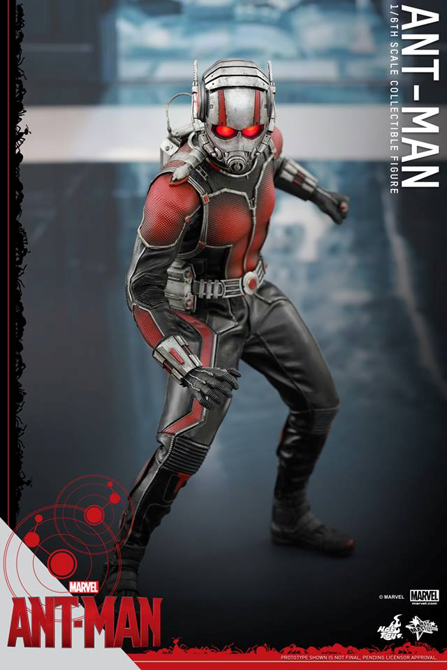 HOT TOYS - Ant-Man - Ant-Man 179515108