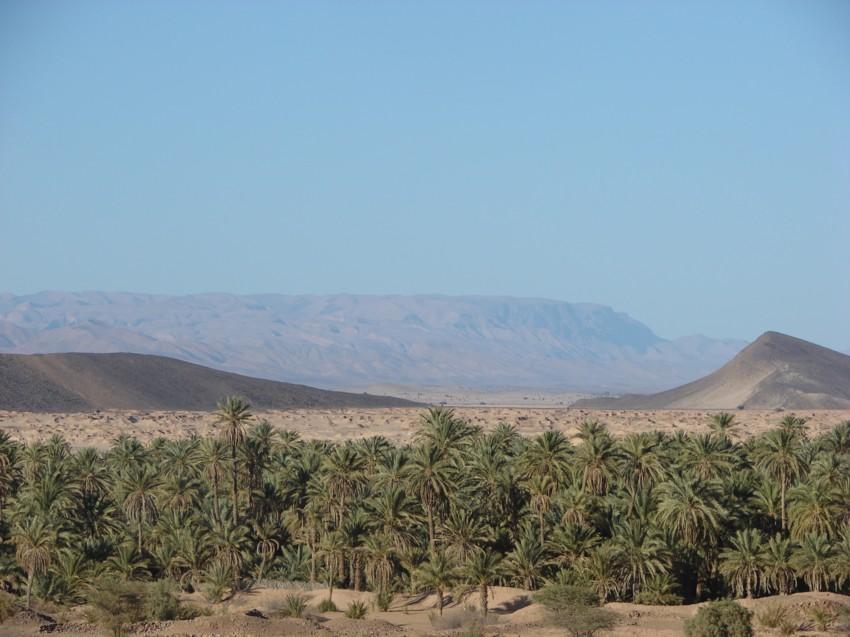 Le Grand Sud du Maroc - II 186608121