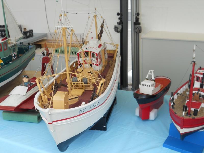 démo de maquettes navigantes sur la place Napoléon à la Roche S/Yon le 31 Mai et le 1er Juin 201885DSCN4024