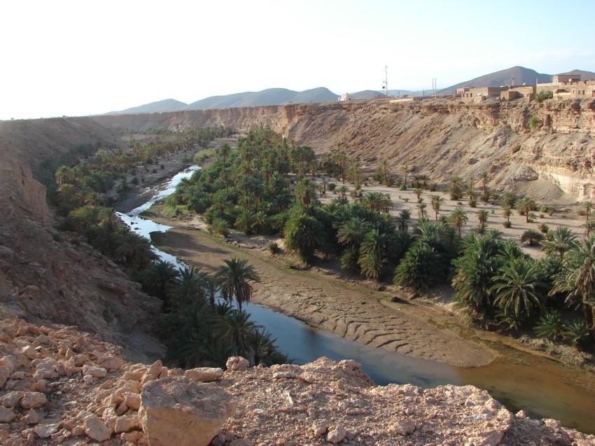 retour maroc 2012 - Page 2 202401123