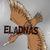 Fiche, boutons d'Eladnas 209717Iconepartoscopie1