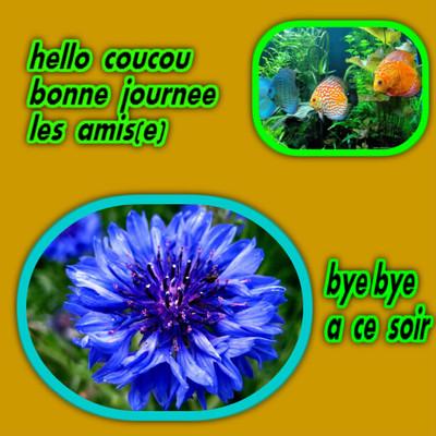Bon Jeudi 212479454cd29631577792c7371a6210fa2018