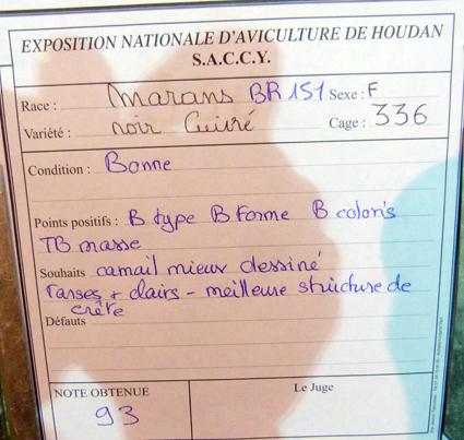 exposition d'aviculture Foire ST MATTHIEU 27 et 28 Septembre 2014 - Page 3 217021P1150685
