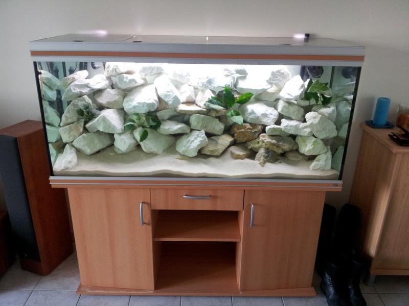 Vends Aquarium 450 litres 217521120913054723447248