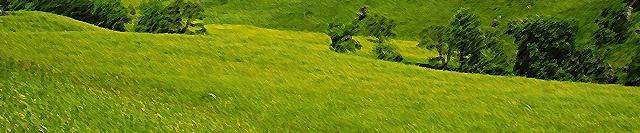 Les Plaines du Val Brillant