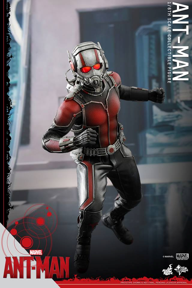 HOT TOYS - Ant-Man - Ant-Man 228357109