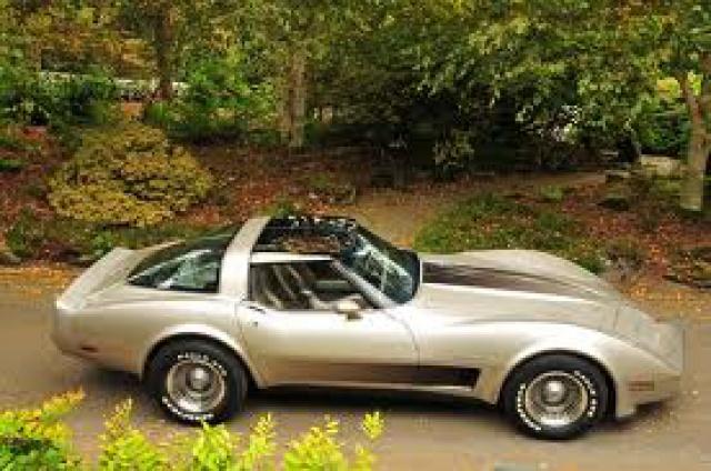 chevrolet corvette 1982 edition collector monogram au 1/8 - Page 2 228498corvettei
