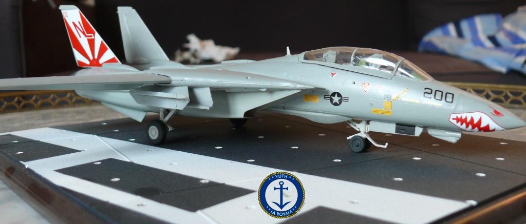 """F-14 Tomcat VF-111 """"Sundowners"""" 230937tomcat5"""