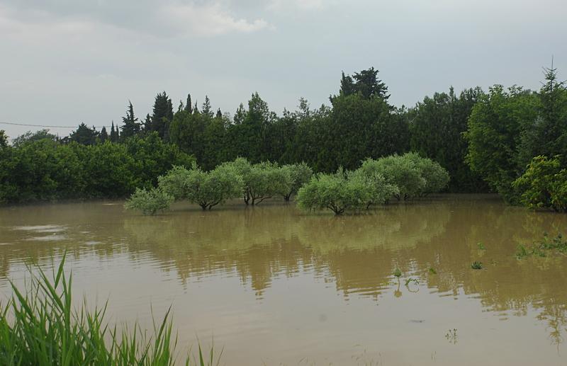 orage saison 2011 236807DSC4651copie