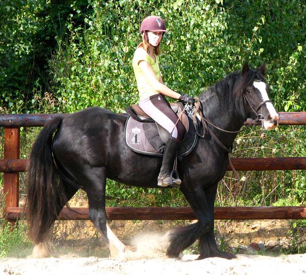 Black Opal et Rosie 239963IMG0593
