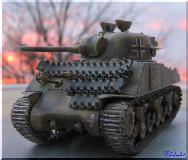 Beutepanzer Sherman M4A2 - Dragon - 1/72ème  241404termin5
