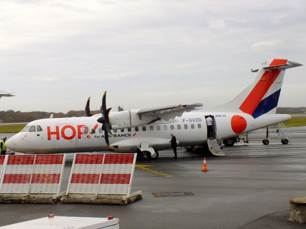 [14/12/2013] ATR-42 (F-GVZD) Hop! 245151Decembren4186