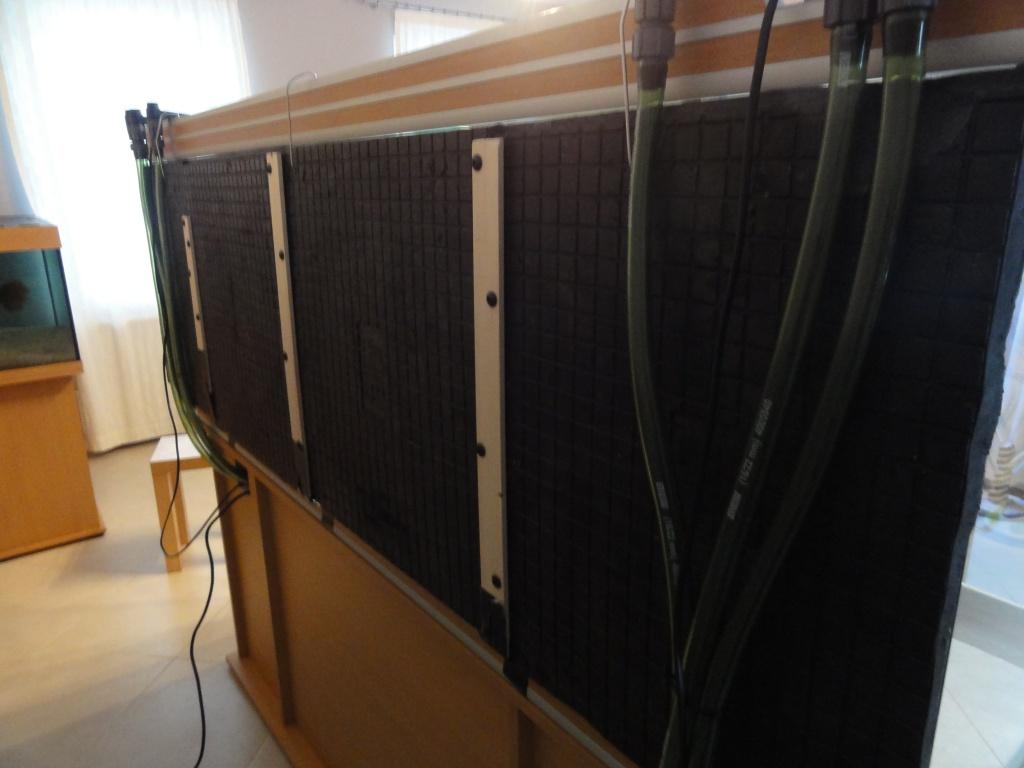 Projet Aquatlantis Evasion 200 x 60 x 75 - 830 litres - Page 5 245752DSC01231