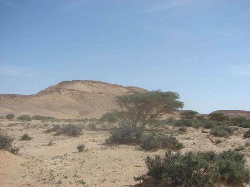 retour maroc 2012 - Page 2 254139050