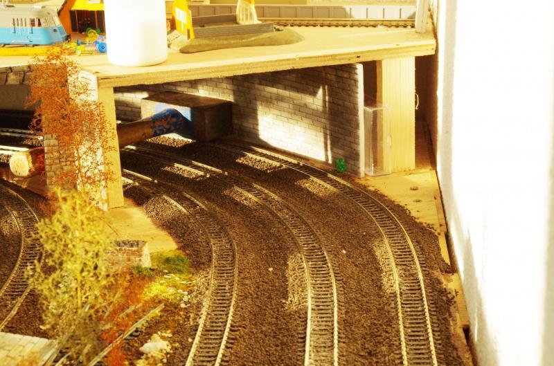 Le Petit Train de Michèle. 254258IMGP0499