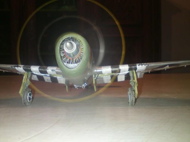 P 47 Thunderbolt 260083315147DSC011472