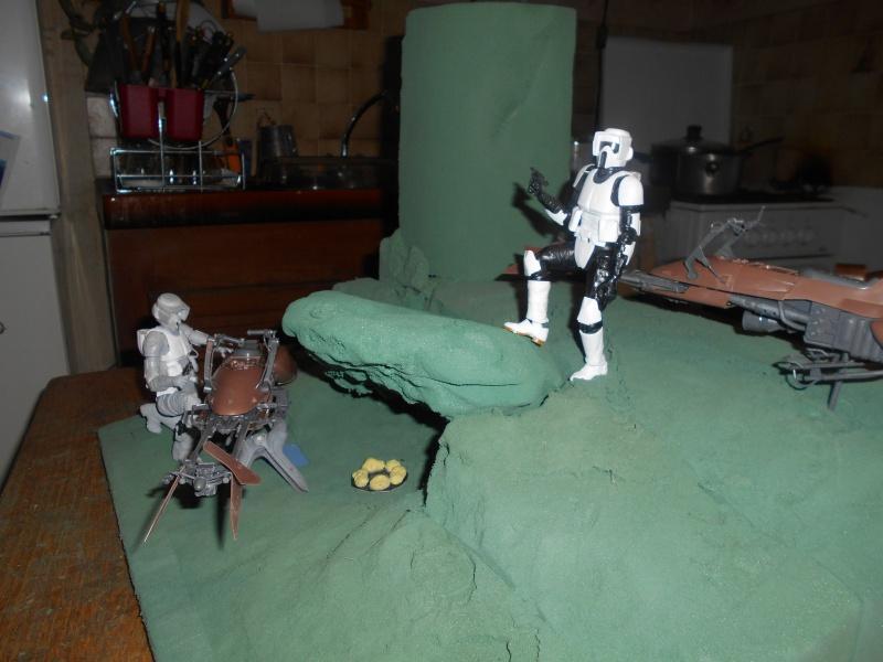 Endor diorama - Page 2 260988DSCN0919