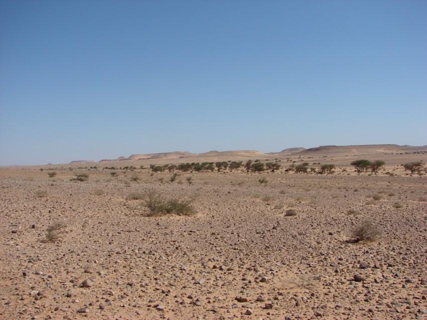 retour maroc 2012 - Page 2 262356098