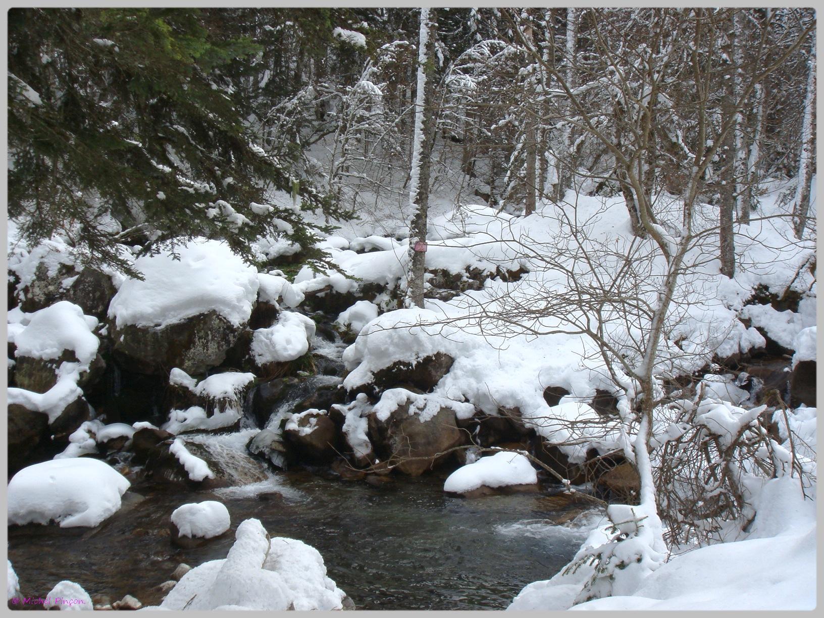 Une semaine à la Neige dans les Htes Pyrénées - Page 2 262568DSC011873