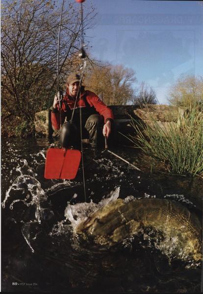 Pike(2) : la dérive en étang. 265745bv1