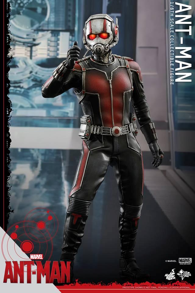 HOT TOYS - Ant-Man - Ant-Man 269032101