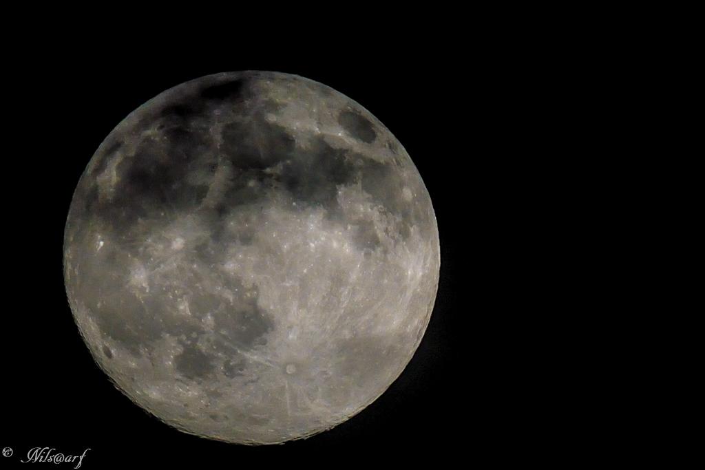 pleine lune 26927511072014DSC36151407112051202sanstitre
