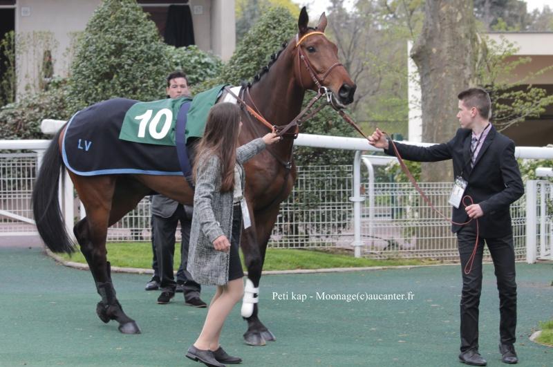 Photos Auteuil 17-04-2016 285726IMG0119