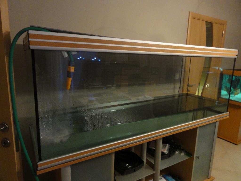 Projet Aquatlantis Evasion 200 x 60 x 75 - 830 litres - Page 5 287547DSC01207